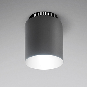 ASPEN C17A CEILING LIGHT