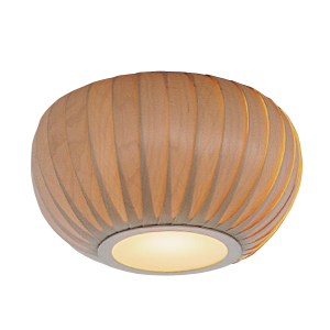 TR29BBR CEILING LIGHT
