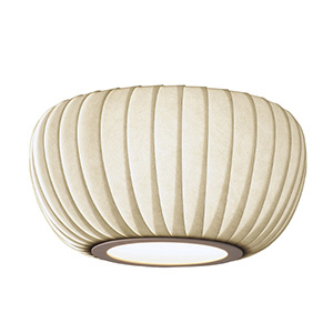 TR29BWH CEILING LIGHT
